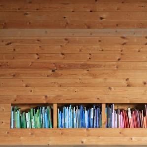 Bookshelf Love: Arranging items by color