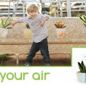 Green Your Air + a special discount code!