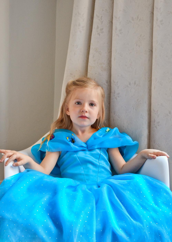 cinderella butterfly dress