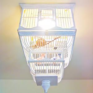 Birdcage Chandelier